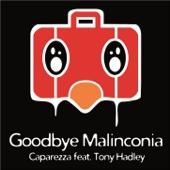Goodbye Malinconia (feat. Tony Hadley)