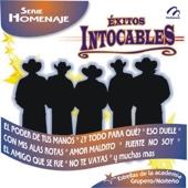 Exitos Intocables - Serie Homenaje