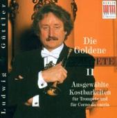 Concerto for Corno da caccia, 2 Oboes, Bassoon, Strings & Basso continuo in D Major: III. Allegro moderato