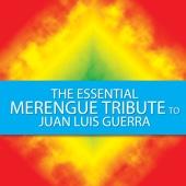 Drew's Famous #1 Latin Karaoke Hits: Sing Like Juan Luis Guerra