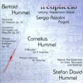 Concertino for Bassoon and Strings, Op. 27b: II. Concerto - Sergio Azzolini, Capriccio, Il & Friedemann Wezel