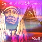 Spirit of the Shaman