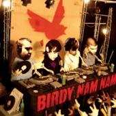 Birdy Nam Nam cover art