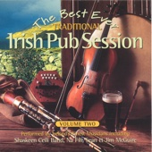 The Best Ever Traditional Irish Pub Session - Volume 2