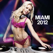 Miami Party 2012: Ultimate Dance Party Music, Deep House, Soulful and Electronic Music Party Songs