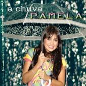 Você Me Conquistou - Pamela