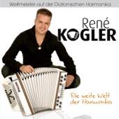 Die weite Welt der Harmonika
