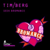 Seek Bromance (Avicii Vocal Edit)