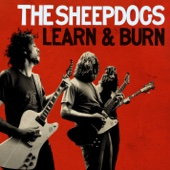 Learn and Burn (Deluxe Version)
