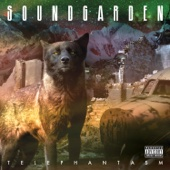 Soundgarden - Black Hole Sun Grafik