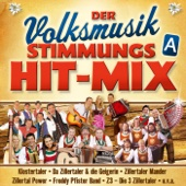 Der Volksmusik Stimmungs Hit-Mix - A