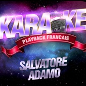 Les succès de Salvatore Adamo
