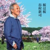 Sakurahasakura
