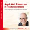 Angst, Wut, Schmerz u.a. in Freude verwandeln - Robert Betz