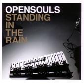 Standing In the Rain (Bonus Track Version)