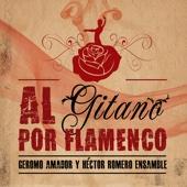 Al Gitano por Flamenco (Tributo del flamenco a Sandro)
