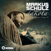 Thoughts Become Things 2 (Markus Schulz Presents Dakota)