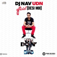 We Doin' It Big (Desi Remix) [feat. RDB, Smooth & Raftaar] - Single - DJ Nav UDN