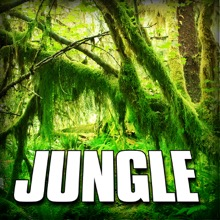 Jungle (Nature Sound) - Single, Sounds of the Earth
