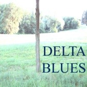 Delta Blues (Cigar Box Guitar)