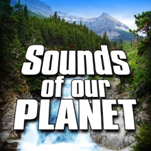 Sounds of Our Planet (Nature Sounds), Sounds of the Earth