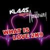 Klaas & Haddaway - What Is Love 2K9  Bodybangers Remix Edit