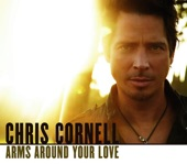 Arms Around Your Love / Thank You - Single
