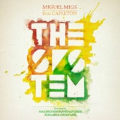 The System (feat. Capleton) [Remixes] - EP
