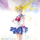 Pretty Guardian Sailor Moon The 20th Anniversary Memorial Tribute