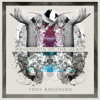 Rise (feat. Salomon Ligthelm) - Tony Anderson