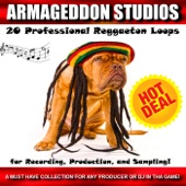 20 Professional Reggaeton Loops for Recording, Production, And Sampling!