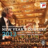 New Year's Concert 2013 (Neujahrskonzert 2013)