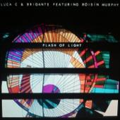Flash of Light (Radio Edit) [feat. Roisin Murphy]