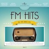 FM Hits - All Time Radio Hits, Vol. 2
