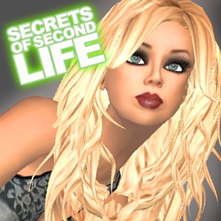 Secrets of Second Life