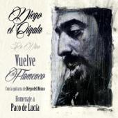 Vuelve el Flamenco: Homenaje a Paco de Lucía (feat. Diego del Morao) [En Vivo]
