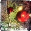 Noaptea de Craciun - Single, Stefan Banica