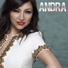 Something New - Single, Andra