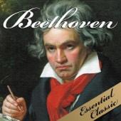 Beethoven: Essential Classic