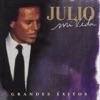 Mi Vida - Grandes Éxitos, Julio Iglesias