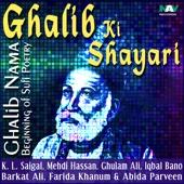 Ghalib-Nama Beginning of Sufi Poetry Mirza Ghalib Ki Shayari