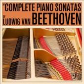 The Complete Piano Sonatas of Ludwig van Beethoven, Including the Moonlight Sonata, Appassionata, Waldstein, Hammerklavier, & More