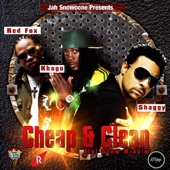 Cheap and Clean (feat. Shaggy & Red Fox) - Single