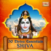30 Divine Essentials - Shiva
