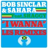 I Wanna (feat. Shaggy) - EP