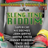 Sleng Teng Riddim - Various Artists