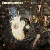 Graffiti On the Train (Deluxe Edition), Stereophonics