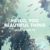 Hello, You Beautiful Thing - Single, Jason Mraz