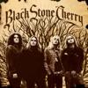 Black Stone Cherry (Bonus Track Version), Black Stone Cherry