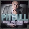 I Know You Want Me (Calle Ocho) - EP, Pitbull